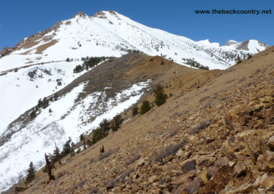 Bishop-Bowl-Backcountry-Skiing10