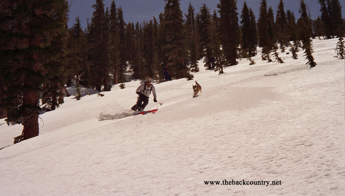 kidney-couloir-backcountry-skiing19