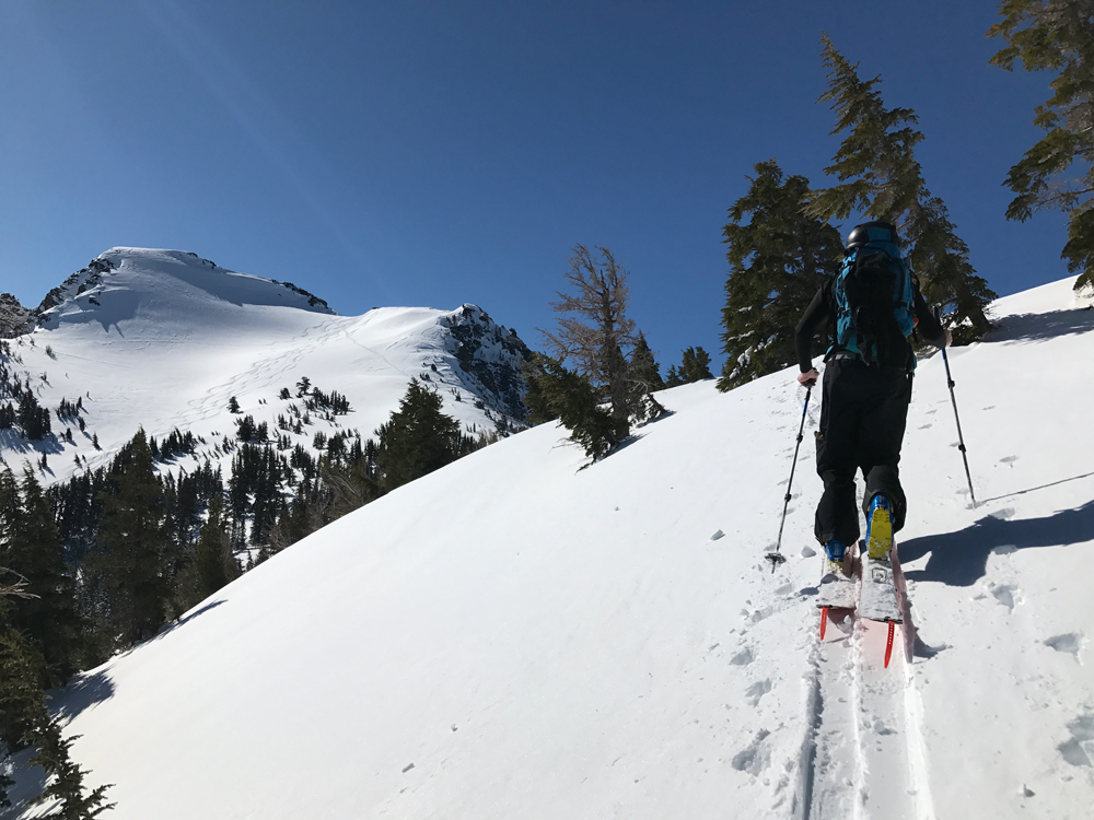 Splitboard Skins The Backcountry